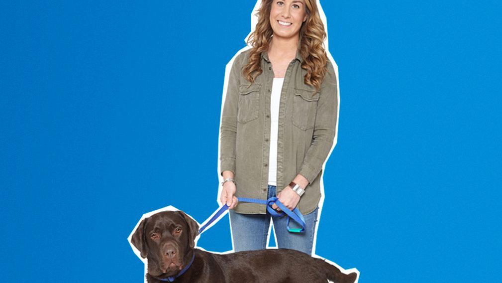 Aegon Dierenverzekering Honden